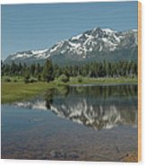 Shallow Water Reflections Wood Print