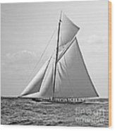 Shamrock II At Outer Mark 1901 Bw Wood Print