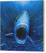 Shark Attack Wood Print by Chris Butler