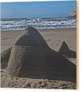 Shark Sand Sculpture Wood Print