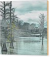 Shaw Mississippi Wood Print