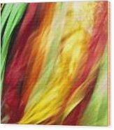 Shawl Dance Abstract Wood Print