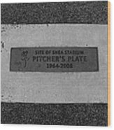 Shea Stadium Pitchers Mound In Black And White Wood Print