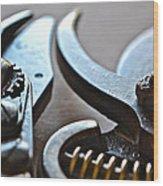 Shears II Wood Print