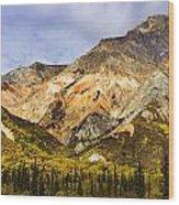 Sheep Mountain Along Glenn Highway Wood Print
