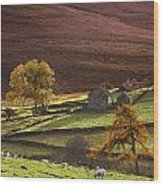 Sheep On A Hill, North Yorkshire Wood Print