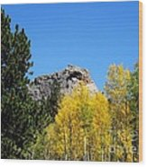 Sheep Nose Mountain In The Autumn Wood Print by Donna Parlow