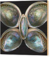 Shell - Conchology - Devine Pearlescence Wood Print