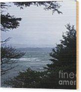 Shelter From Irene Wood Print