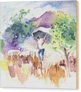 Shepherd In Saint Bertrand De Comminges Wood Print