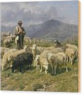 Shepherd Of The Pyrenees Wood Print