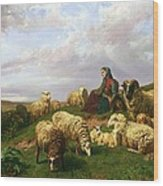Shepherdess Resting With Her Flock Wood Print