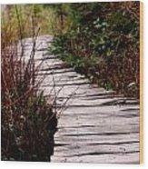 Shi Shi Boardwalk Wood Print