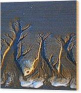 Shifting Sands Wood Print
