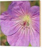 Shimmer Flower Wood Print