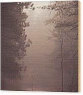 Shine Down On Me Wood Print by Dustin Abbott