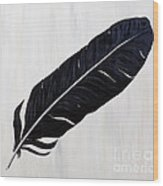 Shiny Feather Wood Print
