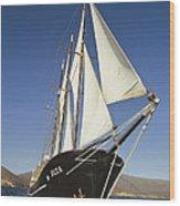 Ship Sailing Through The Galapagos Wood Print