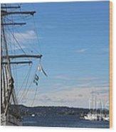 Ships In Oslo Harbor Wood Print