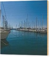 Ships in Their Slips in Toulon Wood Print