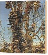 Shoe Tree Wood Print by Lori Kimbel