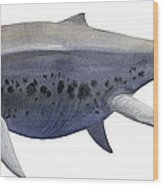 Shonisaurus, A Prehistoric Ichthyosaur Wood Print by Sergey Krasovskiy