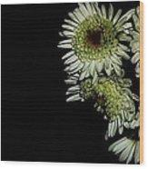 Shooting flowers Wood Print