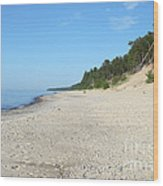 Shore Of Lake Superior Wood Print