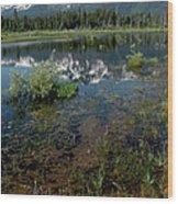 Shore Reflections Of Mt Tallac Wood Print