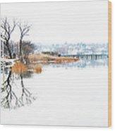 Shore Road Port Washington Wood Print