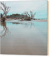 Shoreline - Driftwood Beach Jekyll Island Wood Print