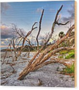 Shoreline Beach Driftwood And Grass Wood Print by Jenny Ellen Photography