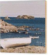 Shoreline Boat Wood Print