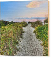 Shoreline Path To View Morris Island Lighthouse Wood Print by Jenny Ellen Photography
