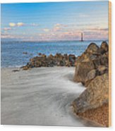 Shoreline View Morris Island  Wood Print by Jenny Ellen Photography