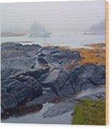 Shorelines Bluerocks Lunenburg Nova Scotia Wood Print