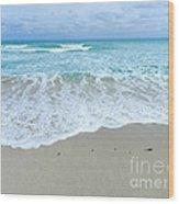 Shores Of  Miamibeach Wood Print