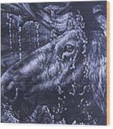 Shower Wood Print