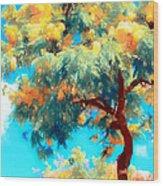 Shower Trees Wood Print