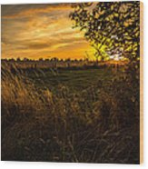 Shropshire Fields In Late Summer Wood Print