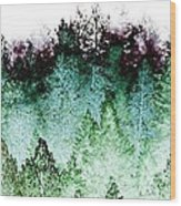 Shrouded In Fog Wood Print
