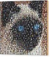 Siamese Cat Mosaic Poster By Paul Van Scott