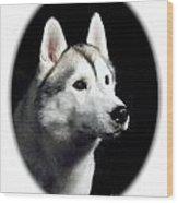 Siberian Husky 271 Wood Print