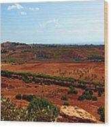 Sicilian Landscape Wood Print