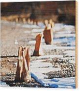 Side Road Luminaries Wood Print