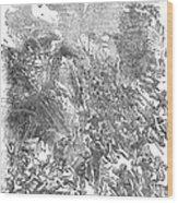 Siege Of Waterford, 1169 Wood Print