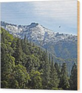 Sierra First Snow Wood Print