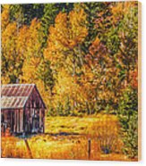 Sierra Nevada Aspen Fall Colors With Rustic Barn Wood Print by Scott McGuire