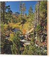 Sierra Nevada Fall Beauty At Lily Lake Wood Print