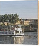 Sightseeing Boat On River Seine. Paris Wood Print